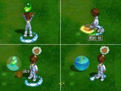 游戏 角色扮演 浪漫庄园 经验心得 > 摇钱树的种植  那么,这棵宝树从