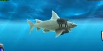 嗜血狂鲨进化金币怎么获得 有什么用
