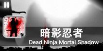 黑夜中的死亡收割者 《暗影忍者》评测
