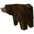 生存战争熊