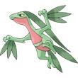 口袋之旅森林蜥蜴图鉴 森林蜥蜴属性图鉴