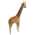 生存战争长颈鹿