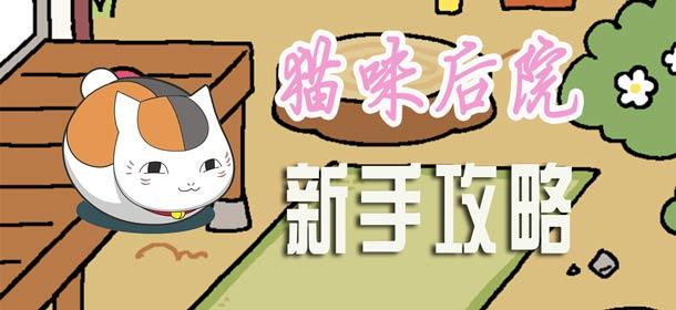 猫咪后院怎么玩 新手攻略助你快速上手