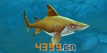 饥饿鲨世界3D伯爵鲨