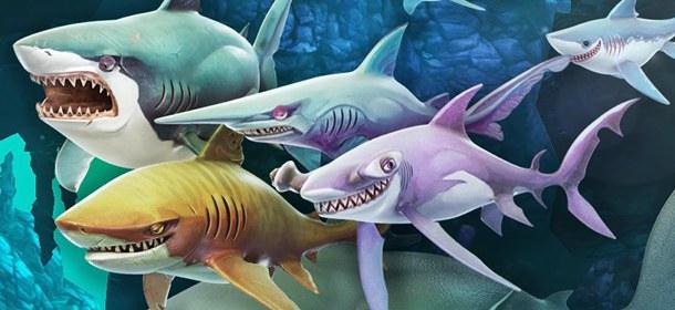 饥饿鲨世界3D宠物推荐 哪个宠物比较好