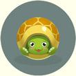 翻滚球球乌龟宝宝