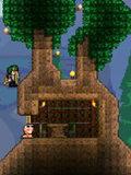 泰拉瑞亚生命树怎么搭房子 生命树火柴屋设计图