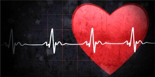 一周神回复:那机械生命和人的差别只有心跳