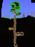 泰拉瑞亚世界树建筑