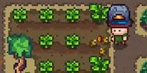 像素生存者3怎么种田 怎么种植农作物攻略
