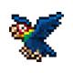 泰拉瑞亚海盗鹦鹉在哪 海盗鹦鹉掉落和打法详解