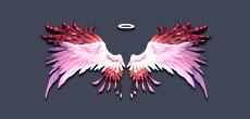 战争使命爱神羽翼