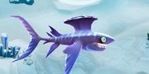 饥饿鲨世界胸脊鲨属性详解 鲨鱼大全