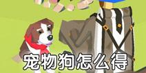 边境之旅宠物狗怎么得 宠物狗有什么用