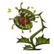 贪婪洞窟2捕蝇草属性详解 怪物解析