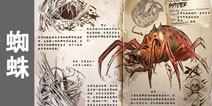 方舟生存进化蜘蛛