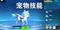 QQ飞车手游宠物技能大全 宠物技能介绍