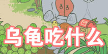 旅行青蛙中国之旅乌龟喜欢吃什么 怎么招待乌龟