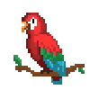 沙盒(进化)鹦鹉介绍 动物鹦鹉属性详解