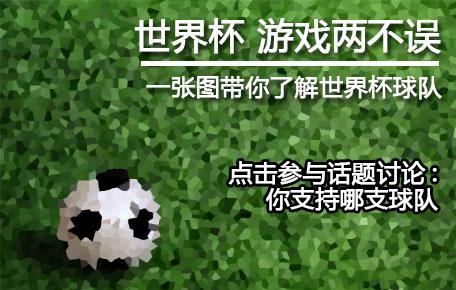 世界杯专题-你支持哪支球队?