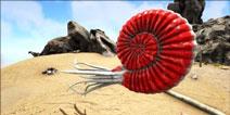 方舟生存进化菊石属性介绍 手机版菊石在哪里找