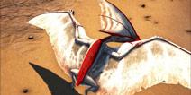 方舟生存进化古神翼龙在哪 方舟古神翼龙刷新位置