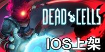 死亡细胞IOS版什么时候出 死亡细胞苹果版下载