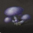 明日之后洞穴菇怎么得 洞穴菇获取方法