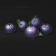 明日之后蓝莓怎么得 蓝莓获取方法