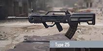 使命召唤手游Type25怎么样 使命召唤手游Type25配件芯片搭配