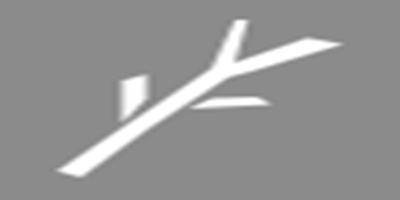 《从零开始》【材料图鉴介绍】――树枝