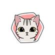 《小森生活》猫咪图鉴大盘点,小森生活牛奶猫喜欢什么