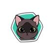 《小森生活》猫咪图鉴大盘点,小森生活酱小油猫喜欢什么