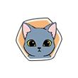 《小森生活》猫咪图鉴大盘点,小森生活小可爱猫喜欢什么