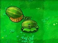 《植物大战僵尸》植物介绍全集(组图)