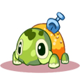 西普大陆沙铲龟