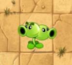 植物大战僵尸2双向射手图鉴 技能