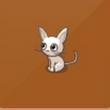 摩尔庄园豪华版小白猫