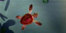 捕鱼达人乌龟捕捉技巧 怎么抓