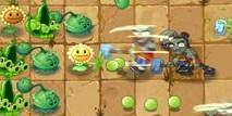 植物大战僵尸2功夫世界主线第13关攻略