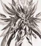 精灵手绘---魔神・诺亚
