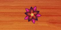 刀片切割花朵大全 花朵解析