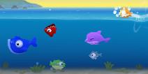海中欢乐锦标赛 《空中飞鱼》评测