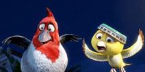 """《愤怒的小鸟》大电影宣布提前上映 为避大片""""夹击"""""""