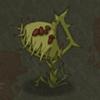 贪婪洞窟捕蝇草