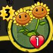 植物大战僵尸英雄双胞向日葵