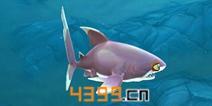 饥饿鲨世界3D白顶礁鲨