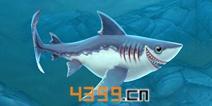 饥饿鲨世界3D鼠鲨