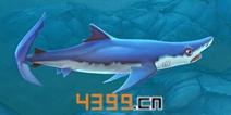饥饿鲨世界3D大青鲨