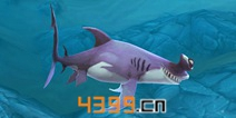 饥饿鲨世界3D锤头双髻鲨